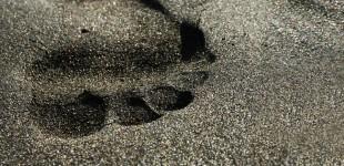 Vergängliche Spuren im Sand